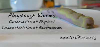 Using Playdough to teach Physical Characteristics of Worms: STEMmom.org