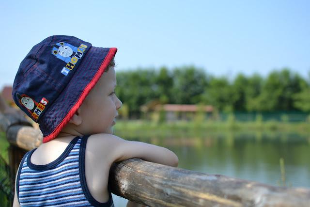 Maşukiye Cansu Alabalık Tesisleri'ndeki gölete bakarken