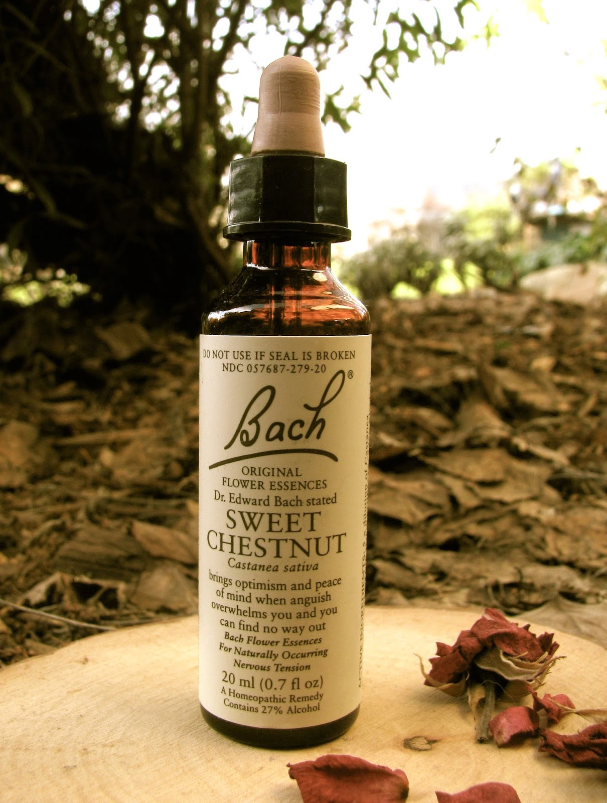 Healthy Gypsy Traveller Bach Flower Remedies For Travel
