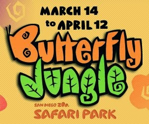 Nothing Says Springtime Like Butterfly Jungle
