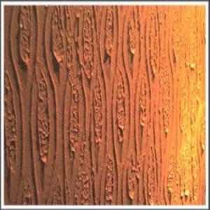 Algumas Dicas De  O Decorar A Sua Casa   Texturas De Parede