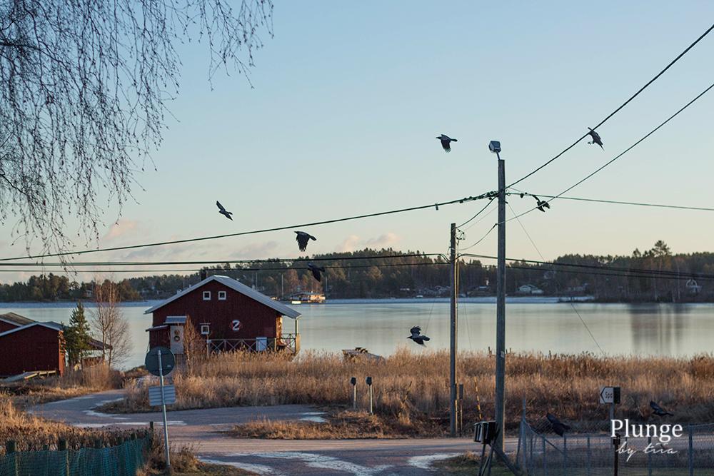 Juniskär, Sundsvall