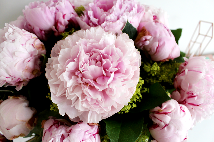 Serenata Flowers Peony Pleasure, UK Beauty Blogger, Peonies, Peony Bouquet, UK Florist,