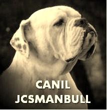 CANIL MANBULL