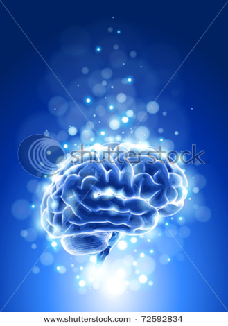 http://1.bp.blogspot.com/-foweHZfjcKY/Taphfy8ltSI/AAAAAAAAAqg/PuoAxnw2Ldk/s1600/imagen+cerebro.jpg