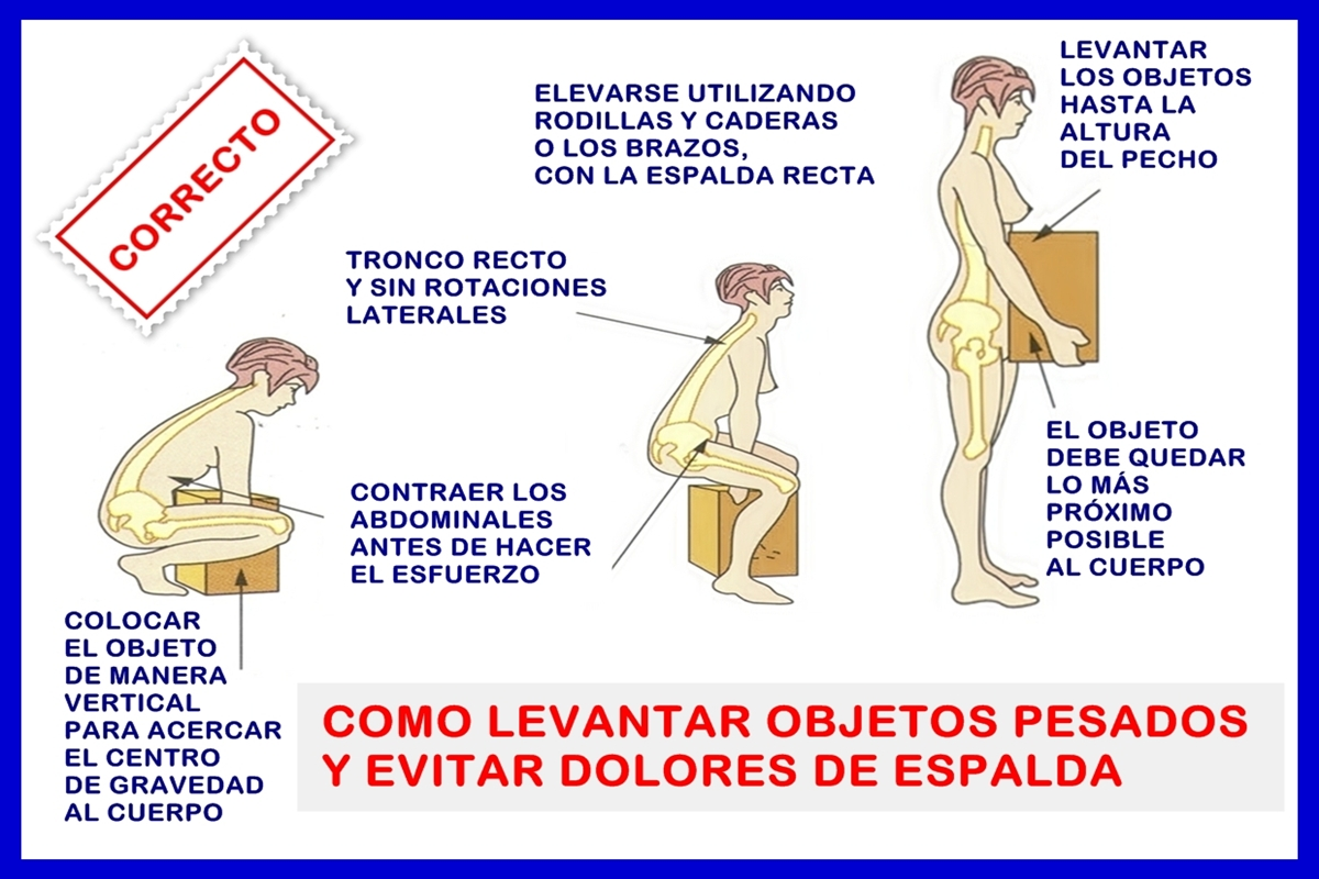 Salud postural forma correcta de levantar objetos salud for Como levantar una casa