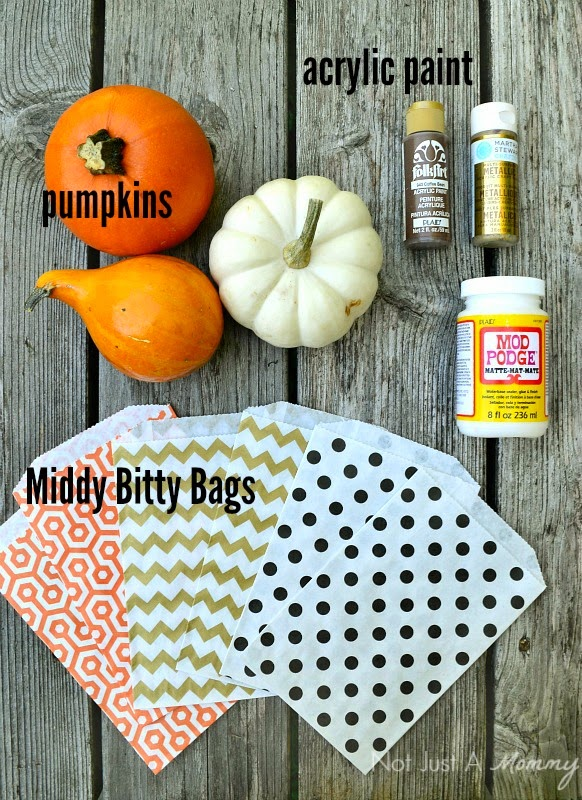 How to mod podge pumpkins with Middy Bitty Bags