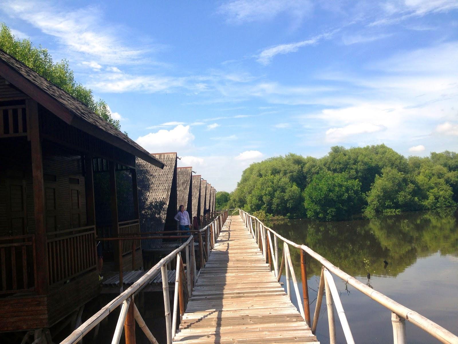Alternatif liburan jakarta : Taman wisata alam angke Pantai indah kapuk PIK  Look At Me