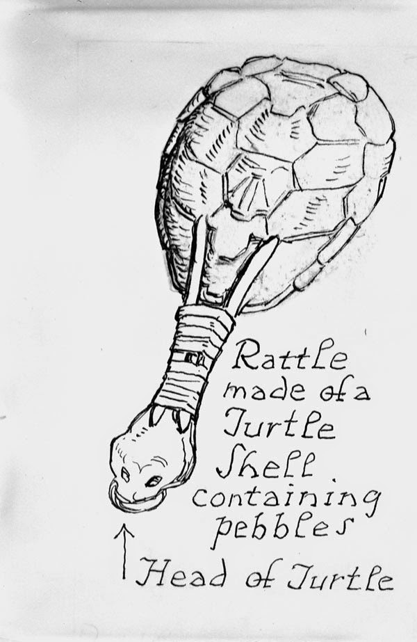rattle made from turtle