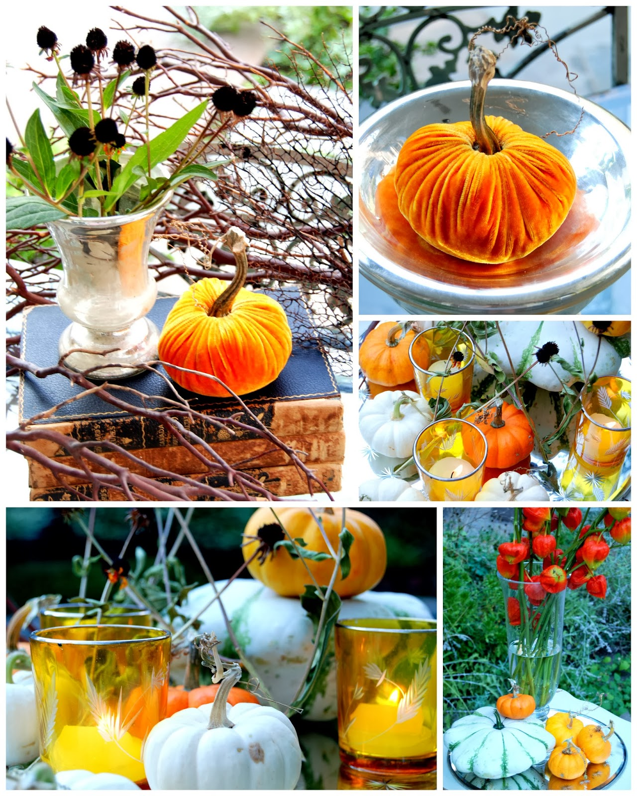 Pumpkins for October and Halloween
