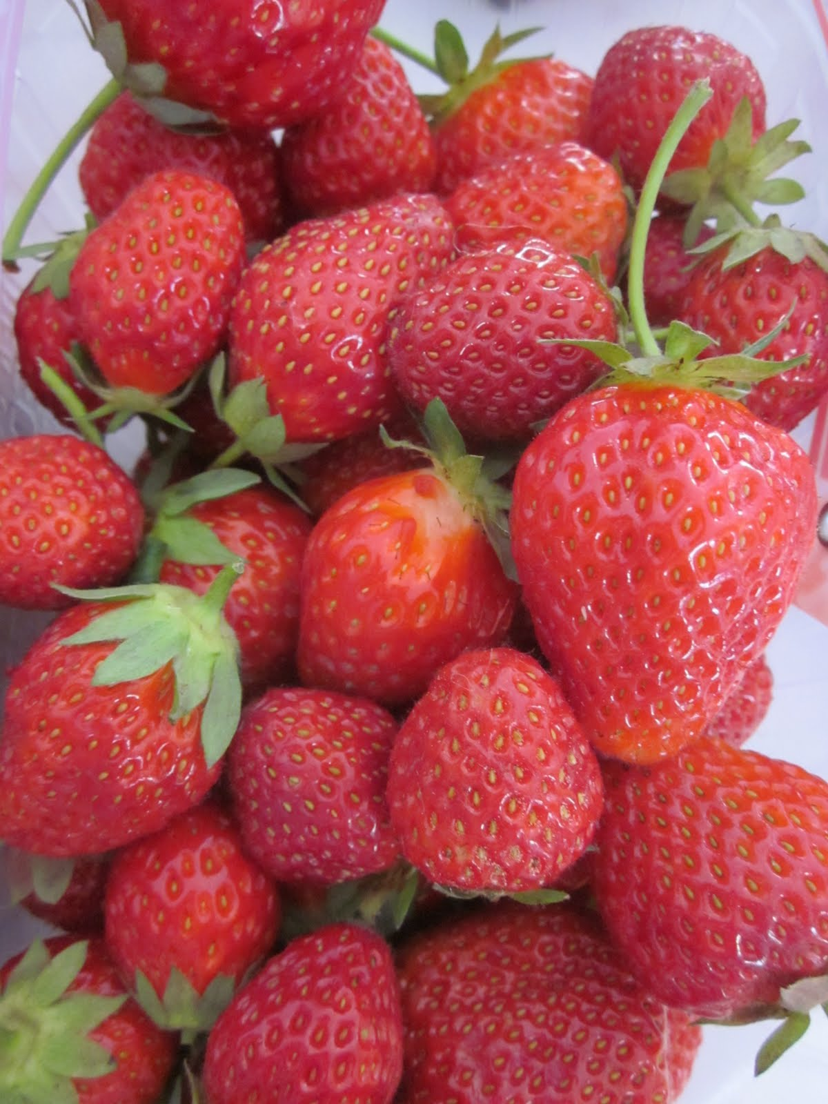 Je n 39 ai que deux pieds ram ne ta fraise - Ramene ta fraise ...