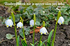 Ostrov stratených príbehov kvitne jarou...