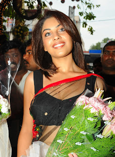 Richa Gangopadhyay in Spicy Transparent Black Saree (55)