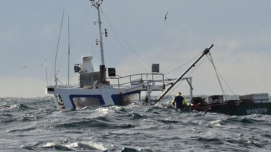 sydney hobart race maximum wave height - photo#32