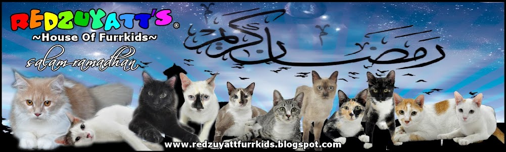 Redzuyatt's ~ House Of Furrkids