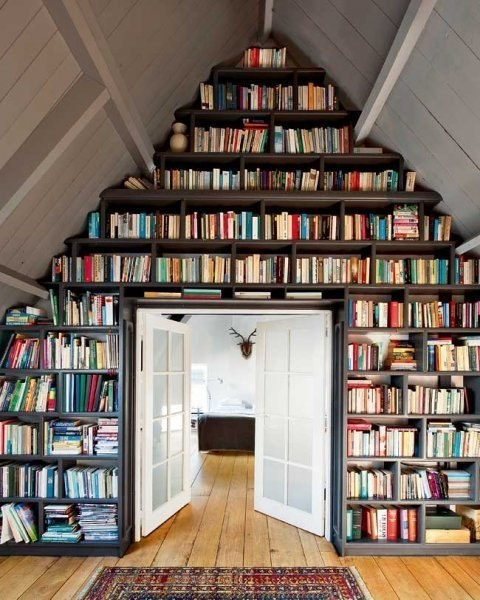 Jealous Of   Great Book Storage