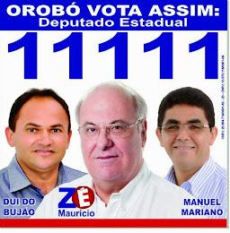 ZÉ MAURÍCIO ESTADUAL 11.111