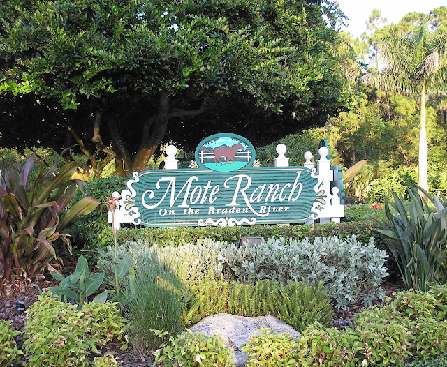 Mote+Ranch+at+Whitfield.JPG