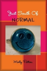 Just South Of Normal (2010 novel)