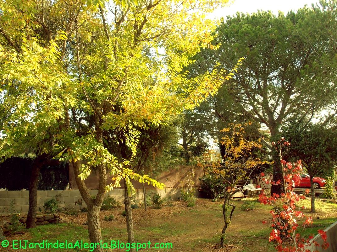 El jard n de la alegr a octubre sereno y dulce for Casa jardin 8 de octubre