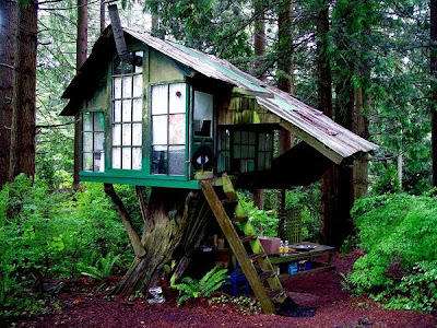 treehouse masters prices 28 cost of treehouse brian kelly tree house cost - Treehouse Masters Prices