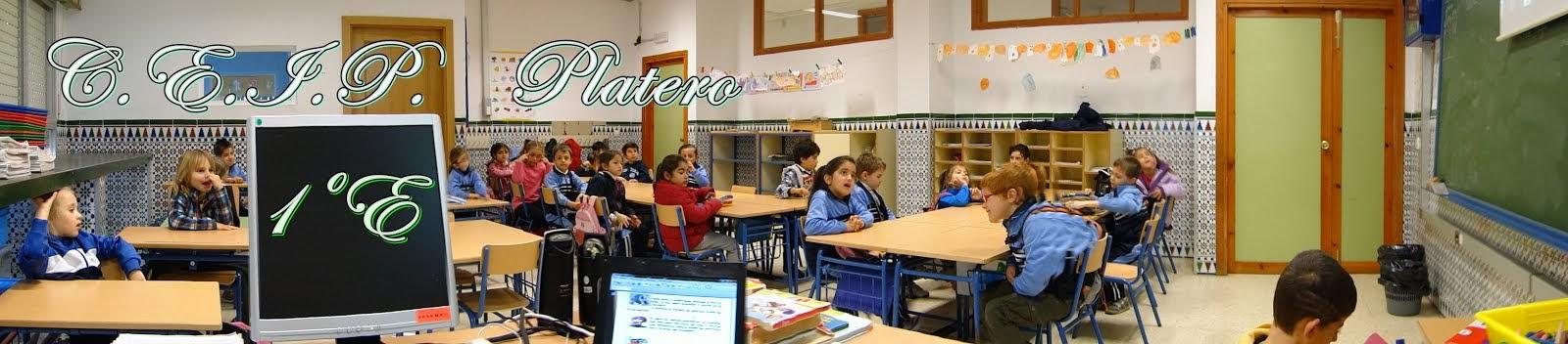 Colegio Platero