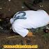 Rapaz e encontrado morto com tiro na nuca, dentro do matagal ao lado do maior Bairro de Colíder.
