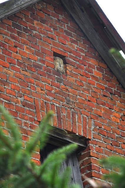 Kamienna głowa Chrystusa jest dla niewprawnego oka mało widoczna - zachodnia, szczytowa ściana domu w Dyszowie. Foto. KW.