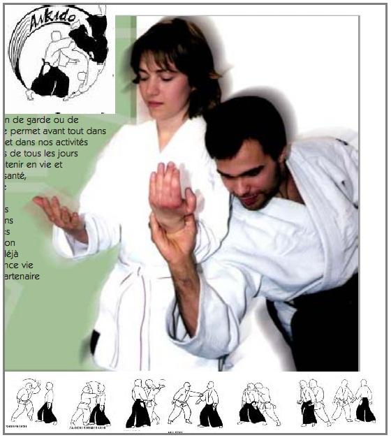 aikido principles of kata and randori pdf