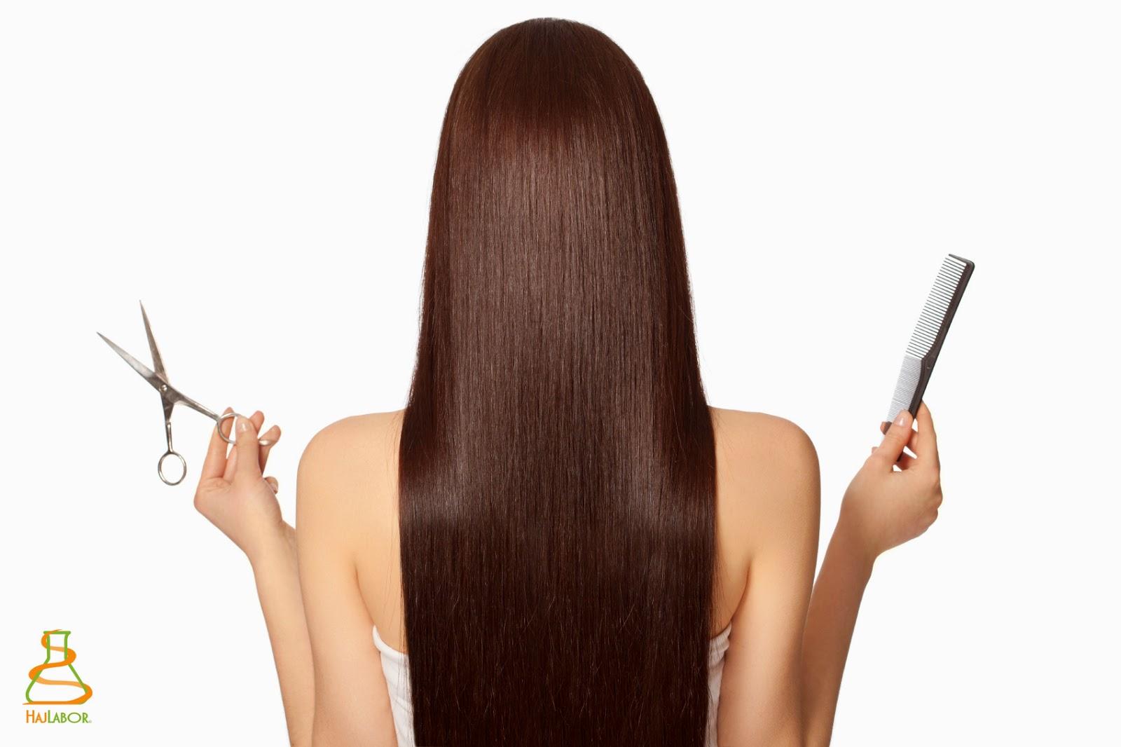 hajszövet analízis, hajszövet elemzés, hajlabor, hajelemzés, hajanalízis, hajdiagnosztika, hajszáldiagnosztika, hajszálanalízis
