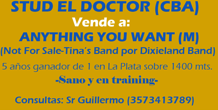 VENTA STUD EL DOCTOR