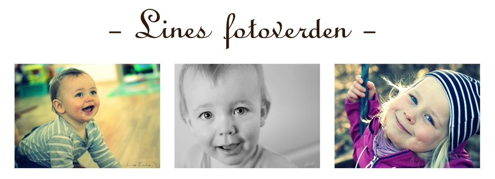 - Lines fotoverden -