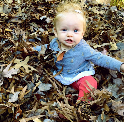 Leven in the leaves