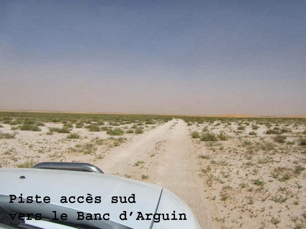 Jaime Le Duster Mauritanie De Rosso Vers Le Banc Darguin