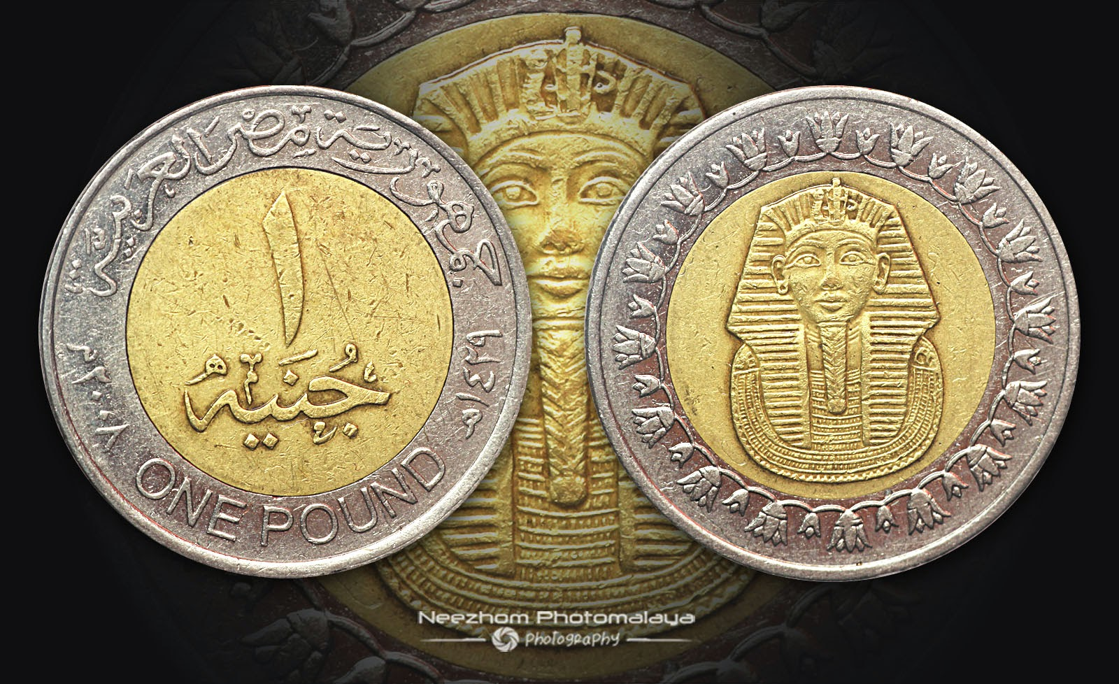 Egypt bi metallic coin 1 pound 2008 King Tutankhamun