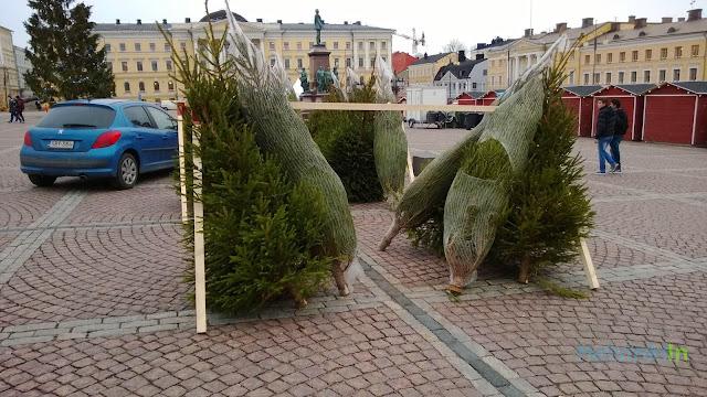 Christmas tree sale