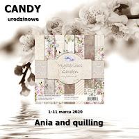 Candy urodzinowe u Ani