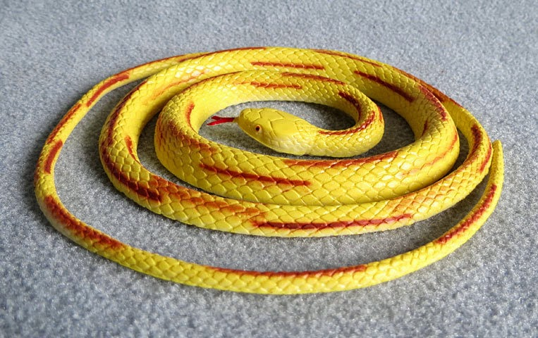 Coiled Yellow Snake Toy