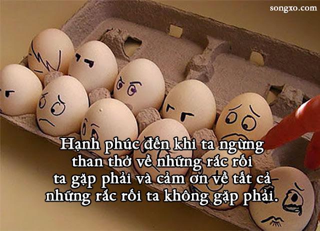12-cau-noi-giup-ban-cam-thay-hanh-phuc-hon-2