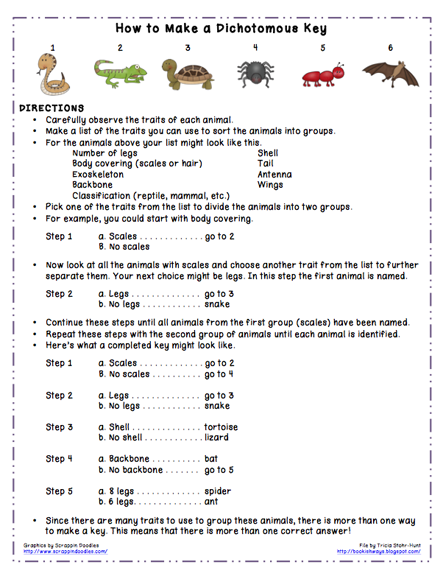 Printables Dichotomous Key Worksheet bookish ways in math and science monday freebie download dichotomous keys
