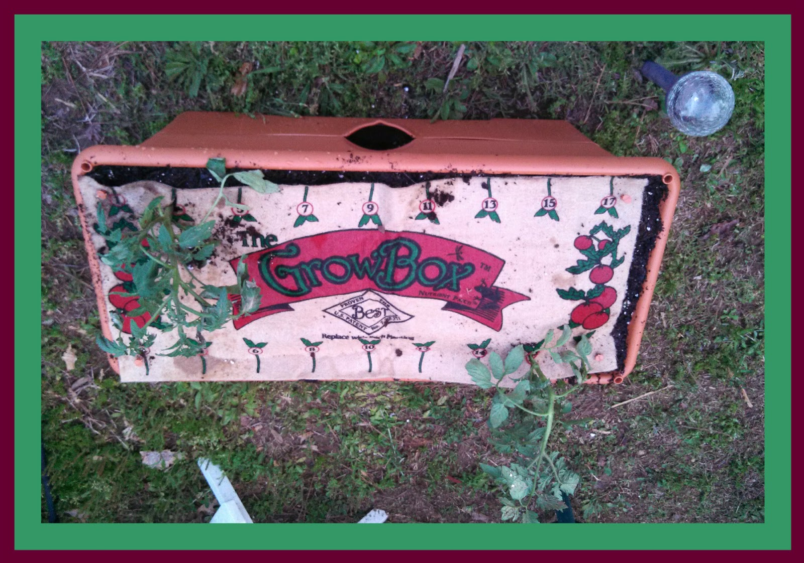 The Garden Patch Growbox Review Giveaway Happenings Of The Harper Household
