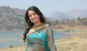 Nikitha in a designer saree