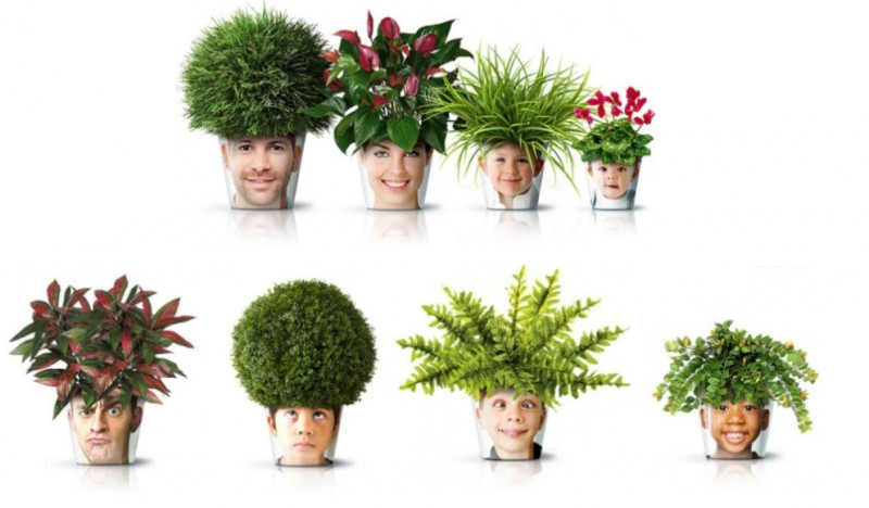 La confesora macetas originales - Macetas originales para plantas ...