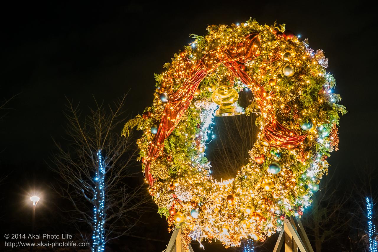 国営昭和記念公園のイルミネーション(巨大クリスマスリーフ)