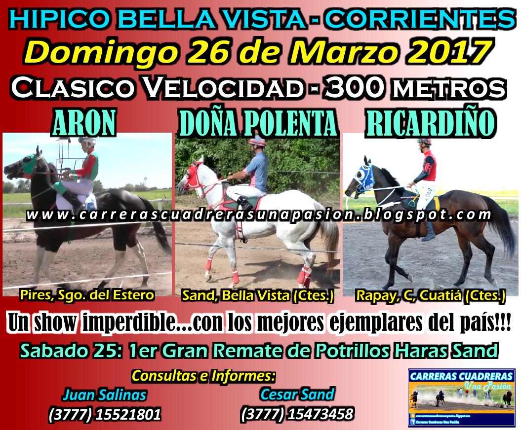 BELLA VISTA - CLASICO 300