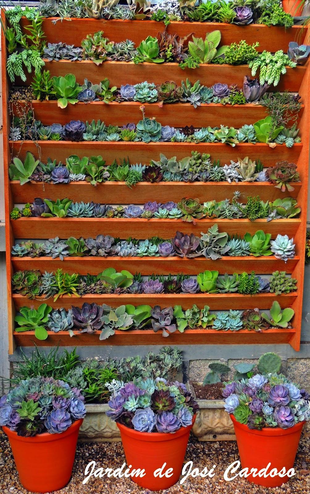 jardim plantas suculentasJardim de Josi Cardoso Passo a Passo