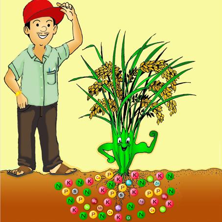 Penyuluh Pertanian2 Dr Arif Zulkifli Nasution