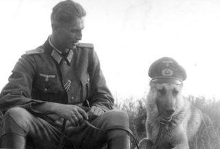perro y soldado nazi