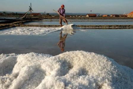 Slamet Junaidi : Industri Garam di Sampang Sangat Prospektif