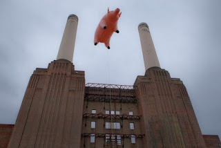 Pig Fly High Over Electricity Retailers In Australia